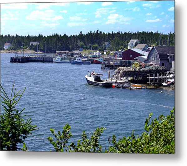 Bush Island Nova Scotia Metal Print