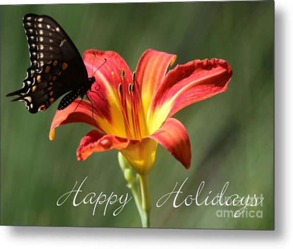 Butterfly And Lily Holiday Card Metal Print