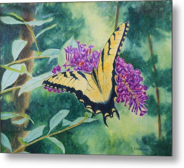 Butterfly Bush Metal Print