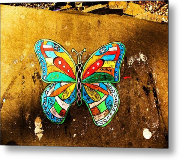 Butterfly Metal Print by Christian Rooney