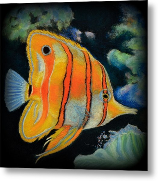 Butterfly Fish Metal Print by Antonia Citrino