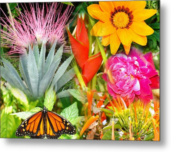 Butterfly In The Flowers Metal Print by Van Ness