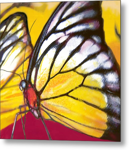 Butterfly - Insect Stylised Pop Art Drawing Potrait Poser Metal Print by Kim Wang
