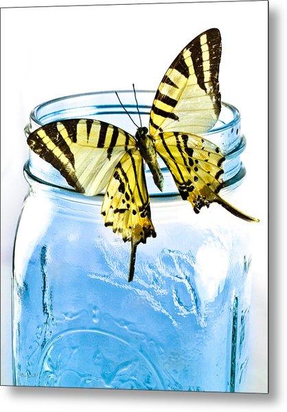 Butterfly On A Blue Jar Metal Print