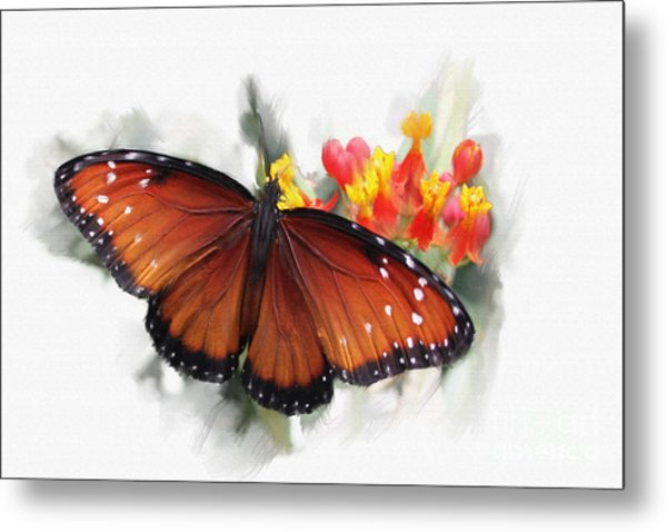 Butterfly Metal Print by Roger Lighterness