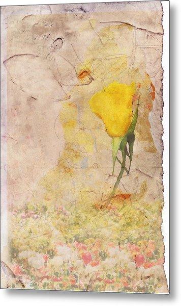 Butterfly Woman Metal Print by Juli Cromer