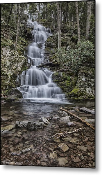 Buttermilk Metal Print