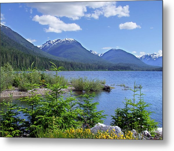 Buttle Lake Metal Print