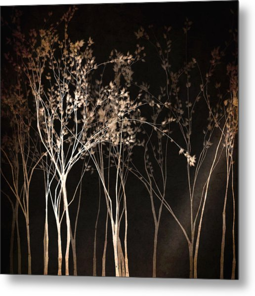 Metal Print featuring the digital art By The Light Of The Moon by Susan Maxwell Schmidt