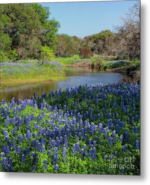 By The Stream Metal Print by Cathy Alba