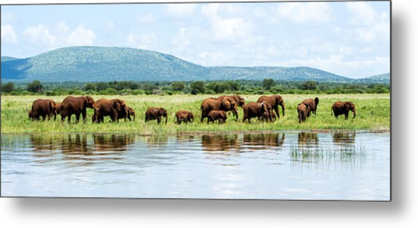 By The Water Panoramic  Metal Print by Stephanie Frankle