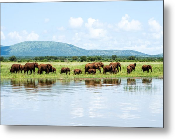 By The Water Metal Print by Stephanie Frankle