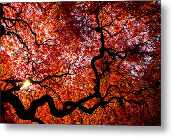 By Your Grace Metal Print