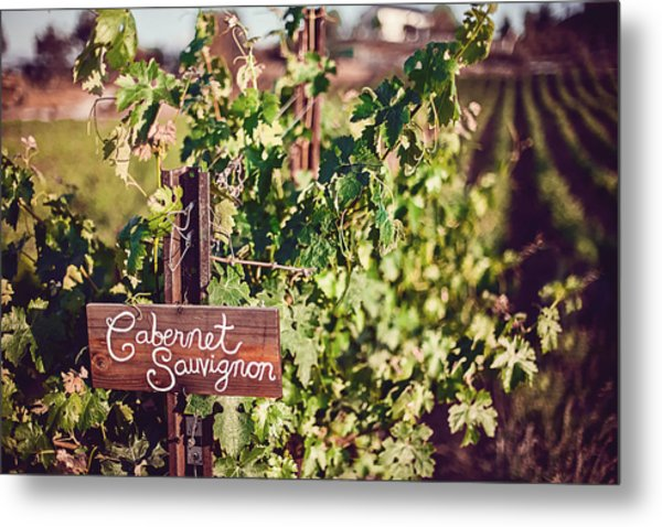 Cabernet Vineyards Metal Print