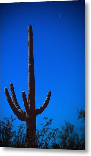Cactus And Moon Metal Print