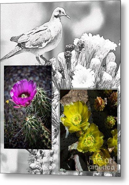 Cactus Flowers 01 Metal Print by David Mendoza