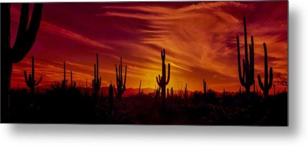 Cactus Glow Metal Print
