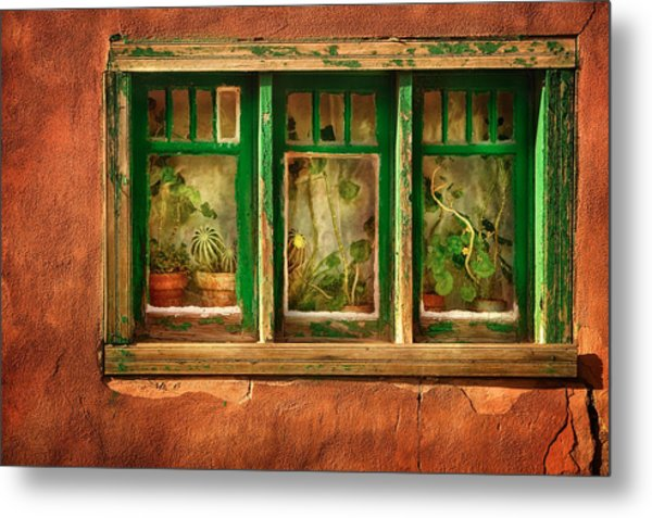 Cactus Window Metal Print