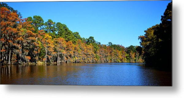 Caddo Lake 1 Metal Print