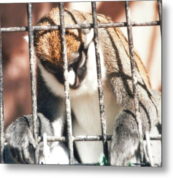 Caged But Strong Metal Print