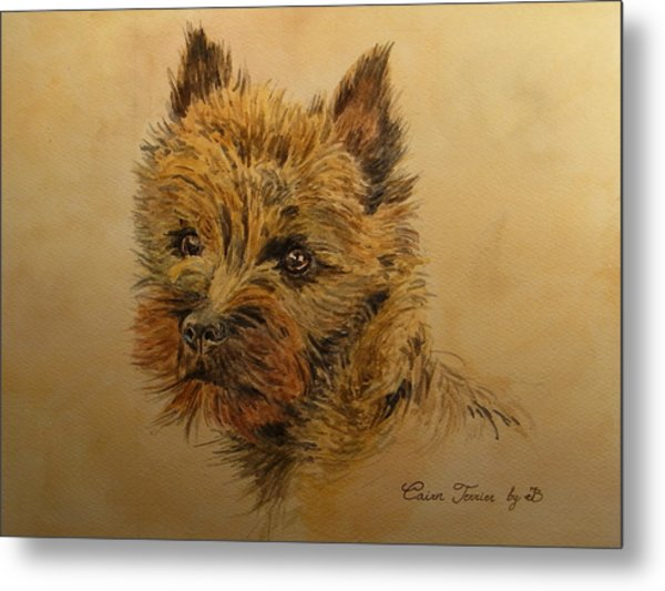 Cairn Terrier Dog Metal Print