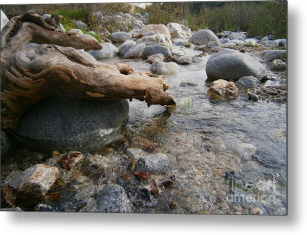 California Canyon 20 Metal Print by Drew Shourd
