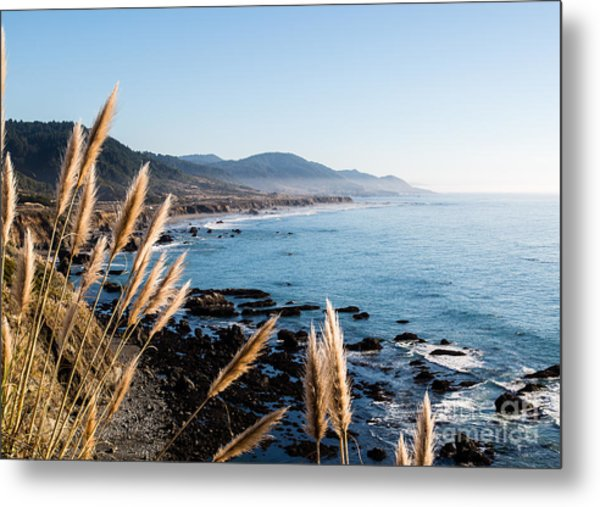 California Coast - 521 Metal Print by Stephen Parker