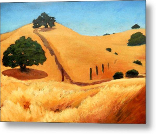 California Dry Grass Metal Print