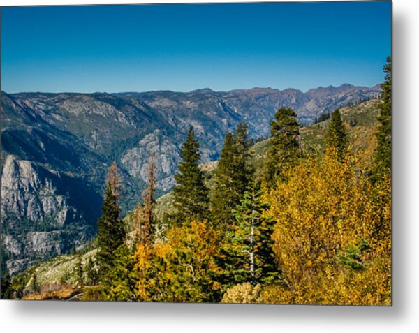 California Fall Metal Print