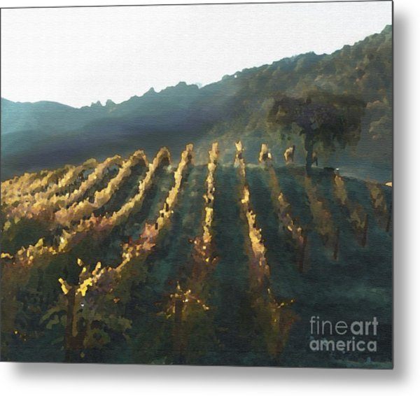 California Vineyard Series Wine Country Metal Print
