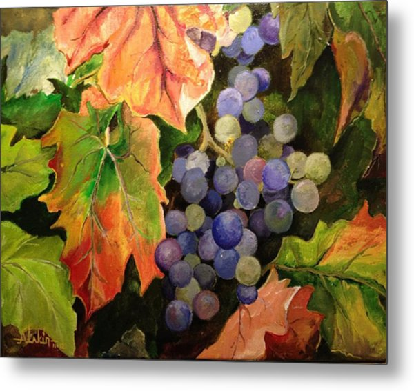 California Vineyards Metal Print