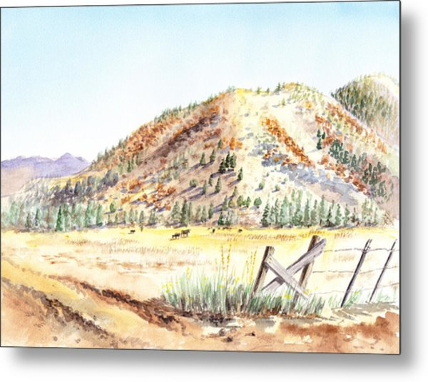Californian Landscape Saint John Ranch Bald Mountain View Shasta County Metal Print