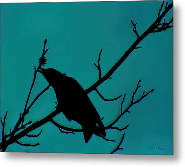 Call Of The Crow On Aqua 2 Metal Print