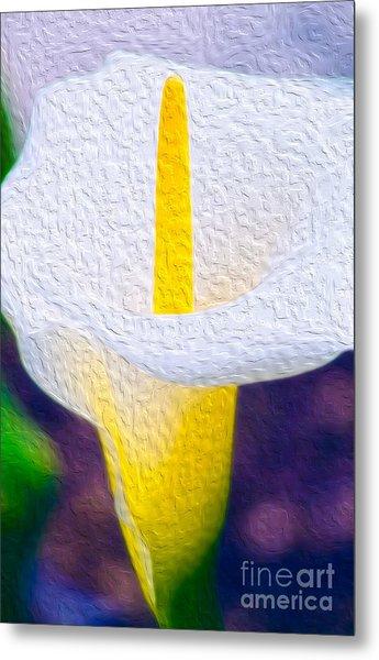 Calla Lily Blossom I Metal Print