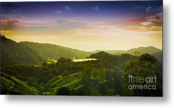 Cameron Highlands Metal Print by Receb Parsel