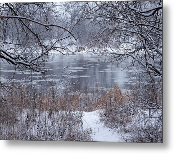 Canada Geese In The Winter II Metal Print