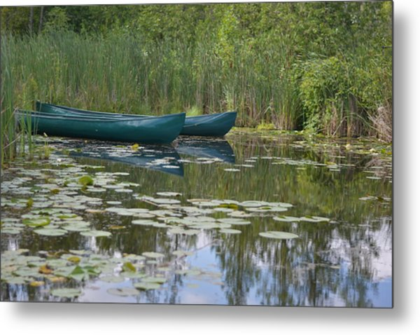 Canoes On Marshland Metal Print