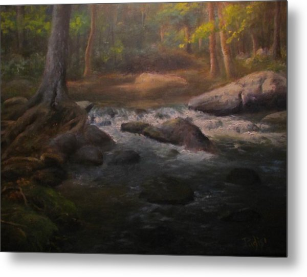 Can't Step Into The Same River Twice Metal Print