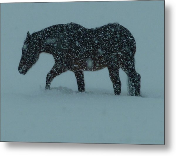 Can't..wait..till..spring..  Metal Print by Gerry Childs