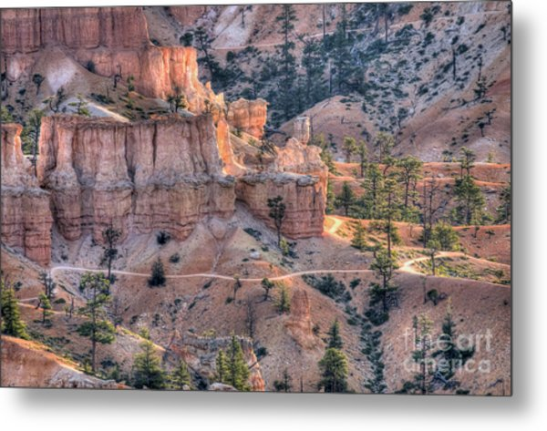 Canyon Trails Metal Print