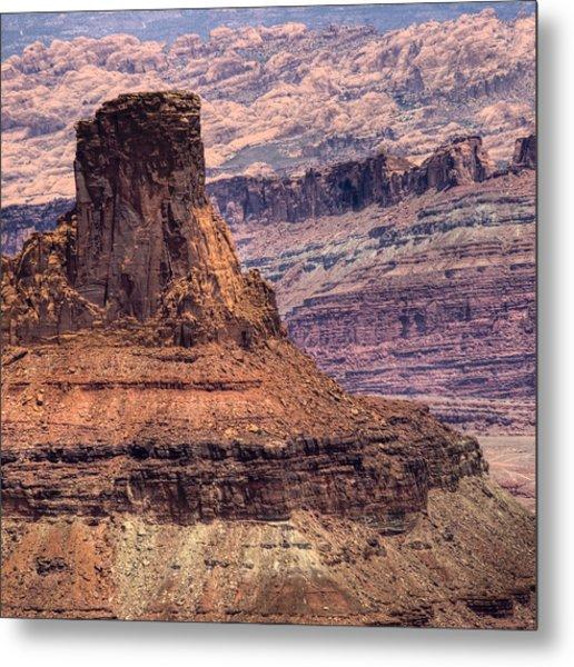 Canyonlands Metal Print by Ryan Heffron