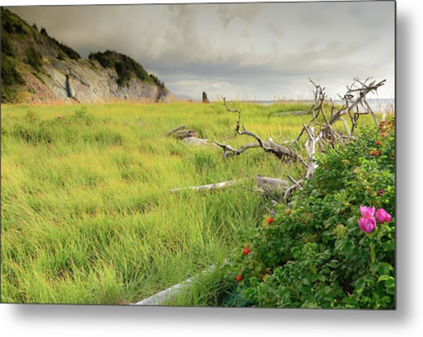 Cape Bretons Summer Beauty Metal Print