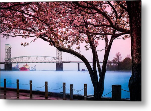 Cape Fear Of Wilmington Metal Print