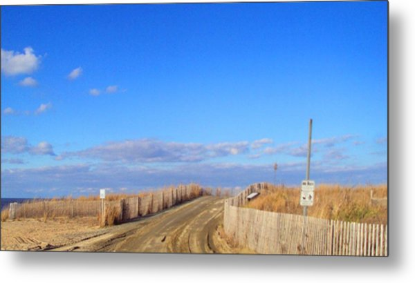 Cape Henlopen 13 Metal Print by Cynthia Harvey