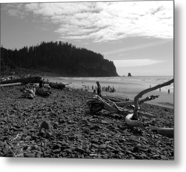 Cape Meares Metal Print