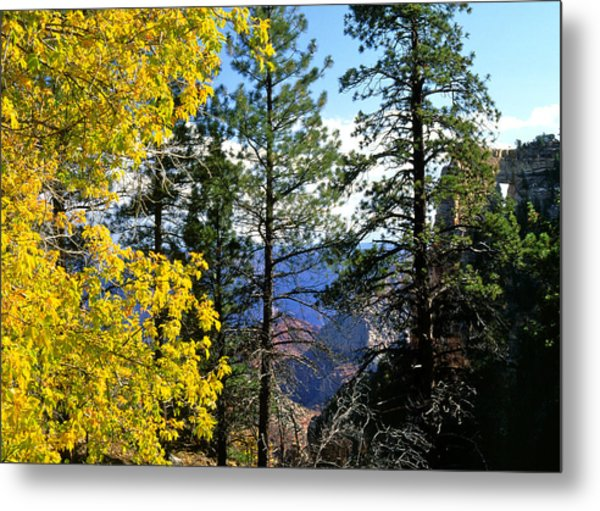 Cape Royal Grand Canyon Metal Print