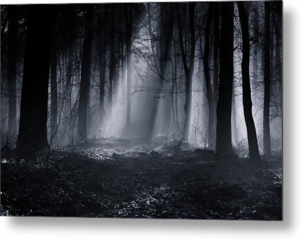 Capela Forest Metal Print by Julien Oncete