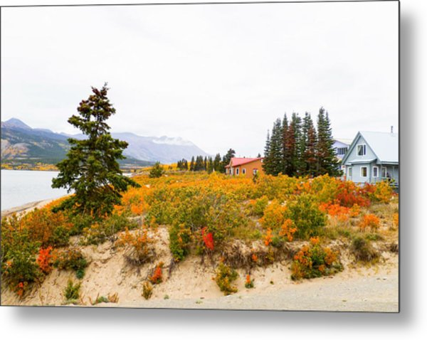 Carcross Bungalows Metal Print