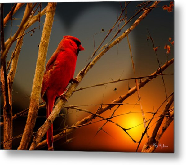 Cardinal At Sunset Valentine Metal Print