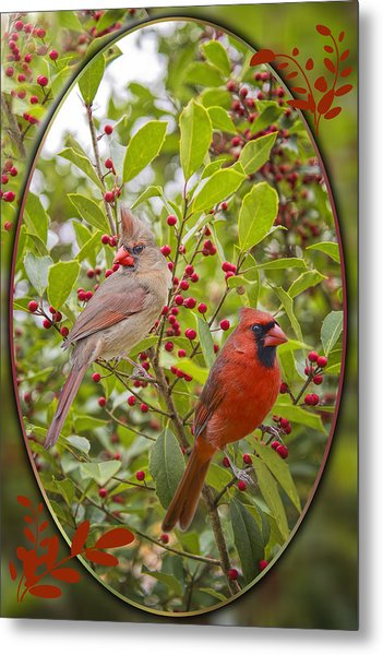 Cardinals In Holly Metal Print by Bonnie Barry